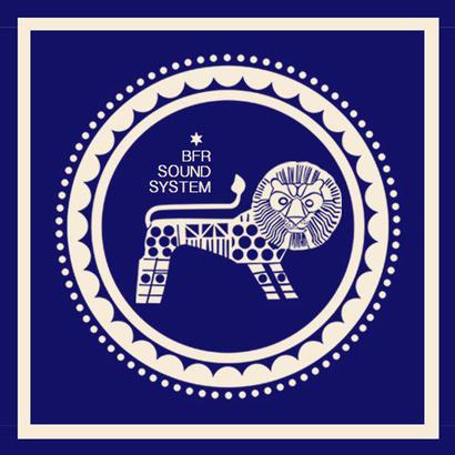 DUBPLATES & 45'S 023 - Delhi Sultanate   BFR Soundsystem
