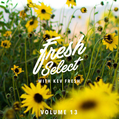 Fresh Select Vol 13