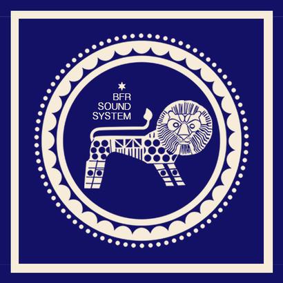 DUBPLATES & 45'S 017 - Delhi Sultanate   BFR Soundsystem