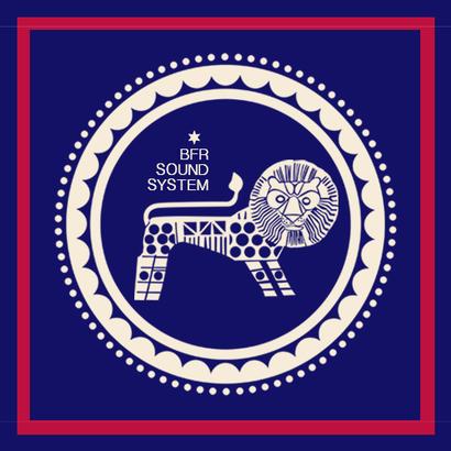 DUBPLATES & 45'S 019 - Delhi Sultanate   BFR Soundsystem