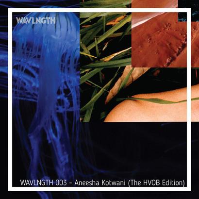 WAVLNGTH 003 : The HVOB Edition - Aneesha Kotwani