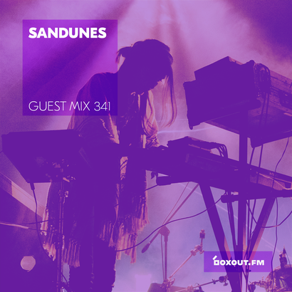 Guest Mix 341 - Sandunes
