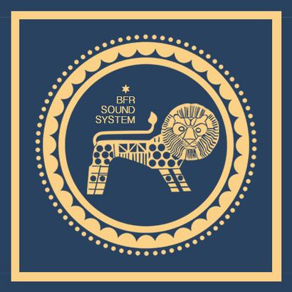 DUBPLATES AND 45'S 011 - Delhi Sultanate   BFR Soundsystem