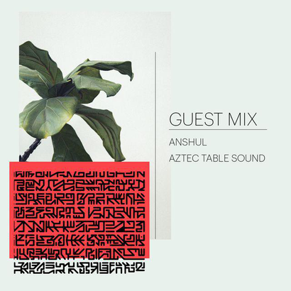 Shuffle Mode 019 - Guest Mix by ANSHUL & AZTEC TABLE SOUND