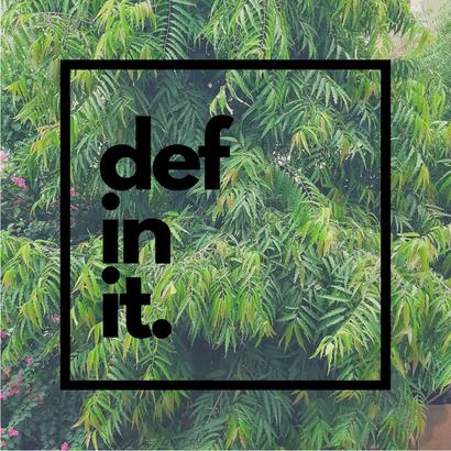 Def In It 005 - Def